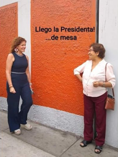 Los mejores memes electorales en Latinoamericana de los últimos meses 12